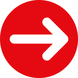 Red arrow bullet icon